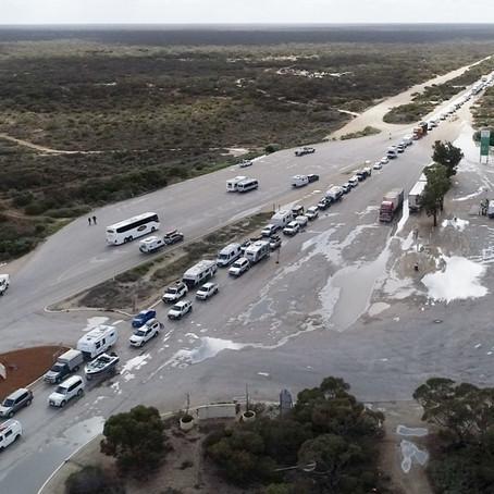 Incredible SA/WA Border Traffic Jam