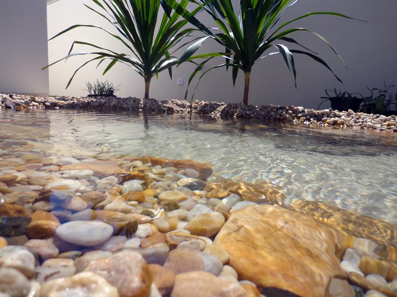 Jardins e lagos Paisagismo e lagos ornamentais