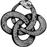 Celtic Knot Snake Ouroboros.jpg