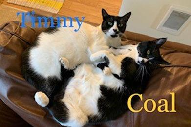 Timmy & Coal.jpg