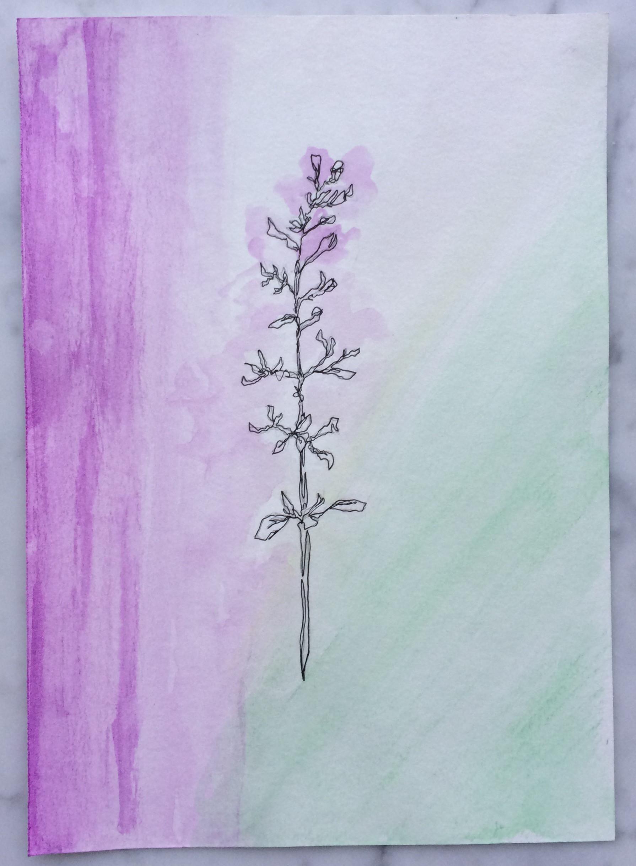 Week 38 - Florence Wildflower