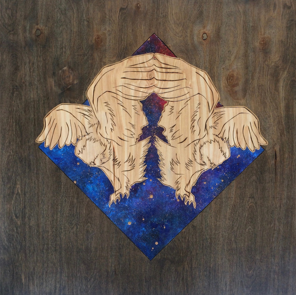 Week 19 - Cosmic Owls