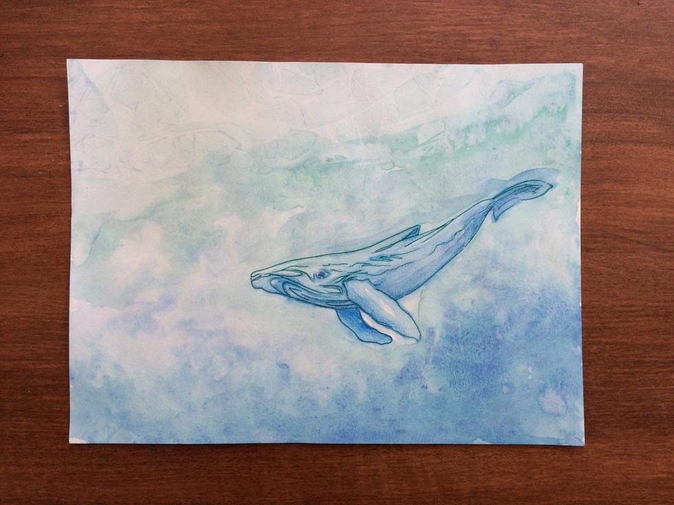 Week 26 - Aquatic Ancestor