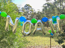 Noah's_Birthday_1.jpg