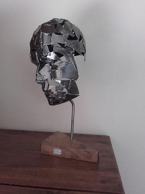 The Iron Head