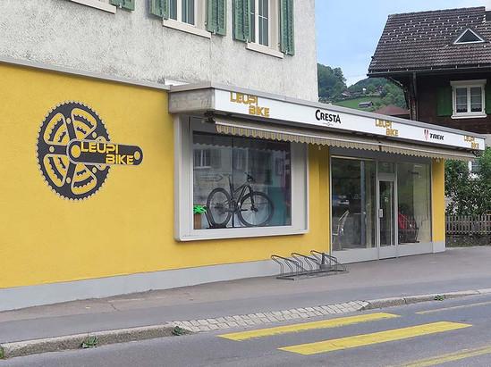 dgthalmann_beschriftung_Leupi_Bike_wallw