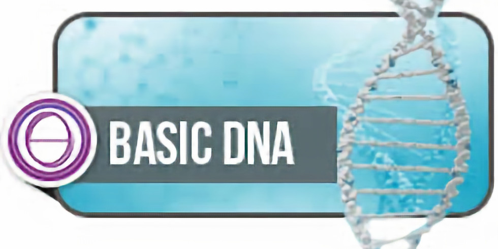 ThetaHealing© Basic DNA Course 3-Day Intensive