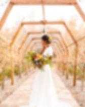 runningharevineyard-brookemichellephotog