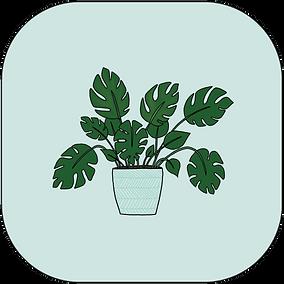 IconHouseplant-01.png