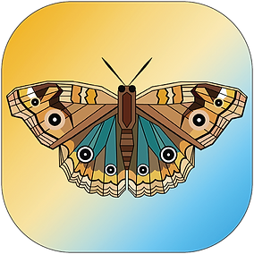 ButterflyIconpng-01.png