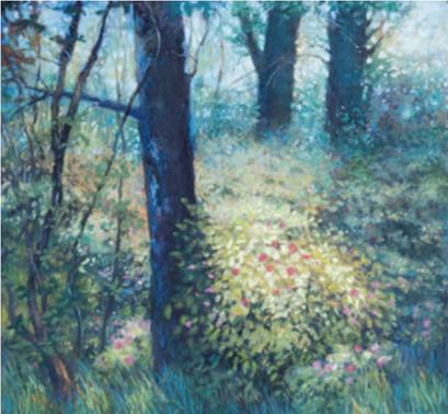 Sunlit Wild Roses.JPG