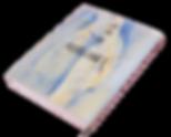 2018-09-14 00.25.45_takemitsubook.png