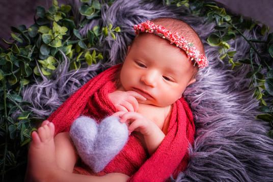 Newborn 12-3.jpg