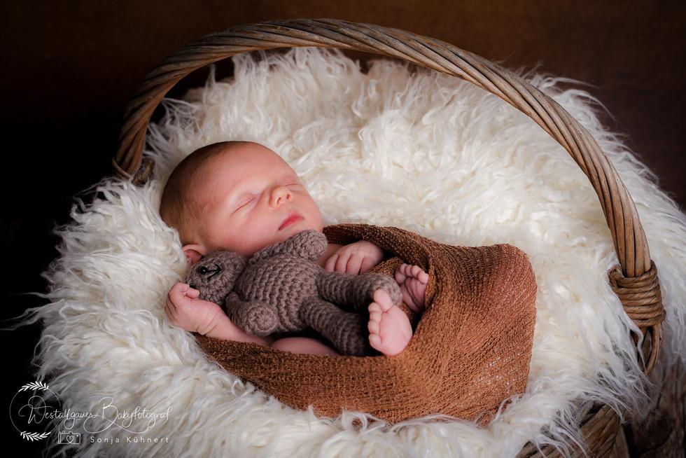 Babyfotograf Babyfotografie-1-11.jpg