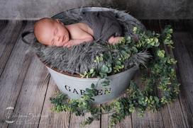 Babyfotograf Babyfotografie-1-3.jpg