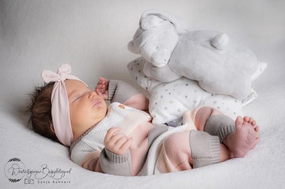 Babyfotografie Allgäu-1-3.jpg