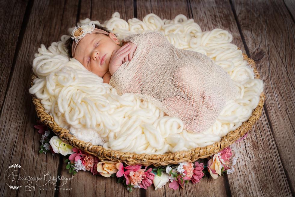 Babyfotografie_Allgäu-1-19.jpg