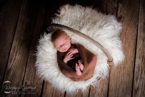 Babyfotograf Babyfotografie-1-13.jpg