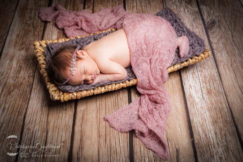 Babyfotografie_Allgäu-1-15.jpg