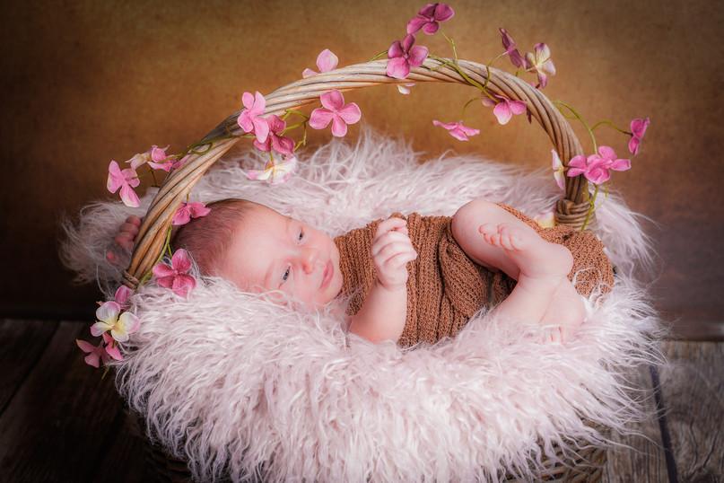 Newborn-2-2.jpg