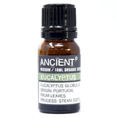 Ancient Wisdom 10ml Organic Eucalyptus Essential Oil Aromat