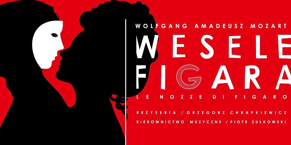 W. A. Mozart - Le nozze di Figaro #2