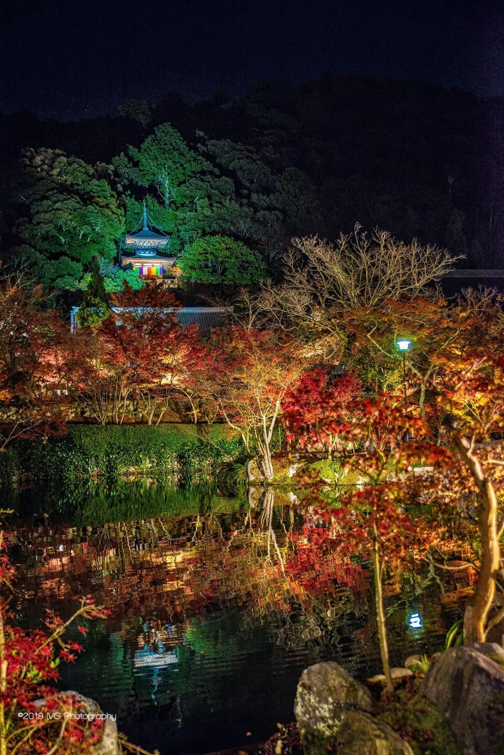 Kyoto at Night No. 11