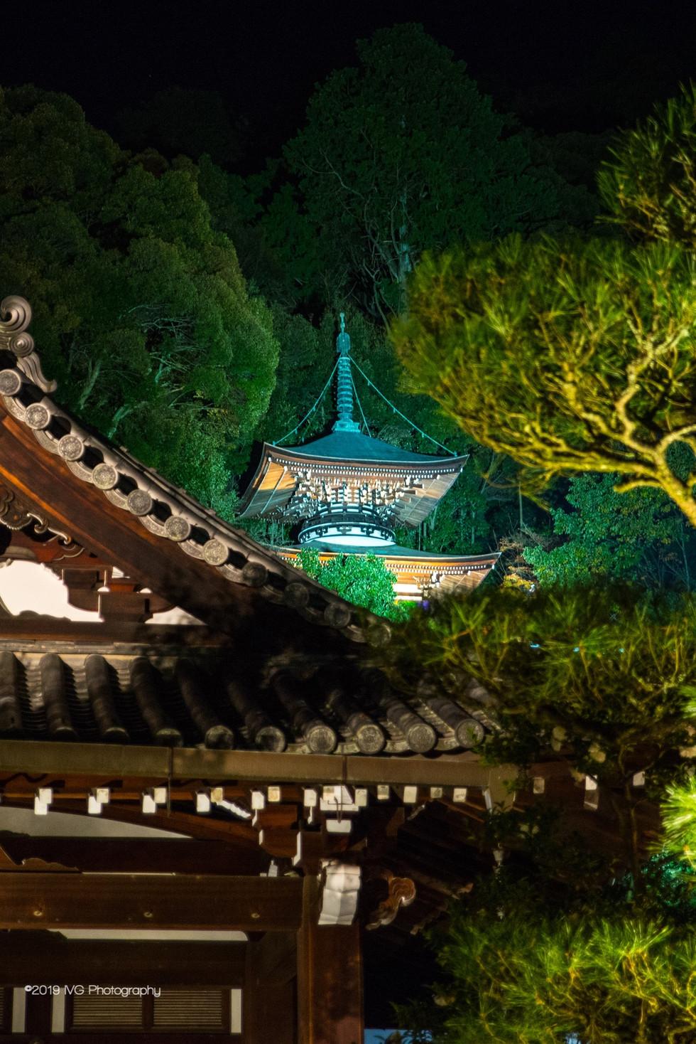 Kyoto at Night No. 1