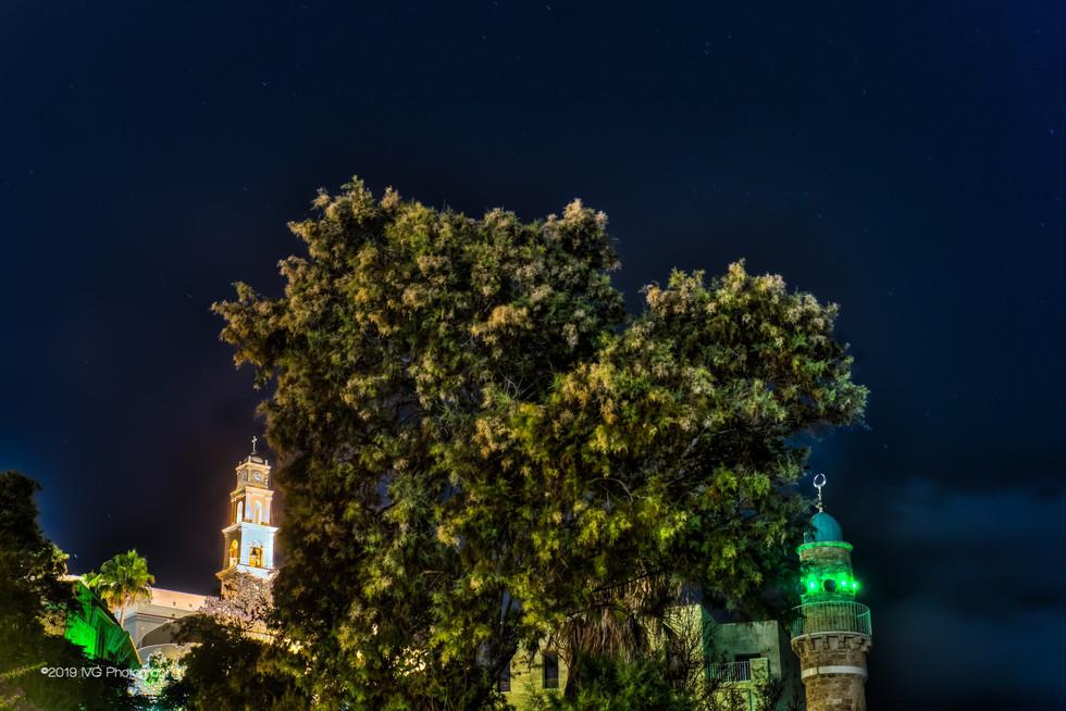 Tel Aviv at Night No. 7