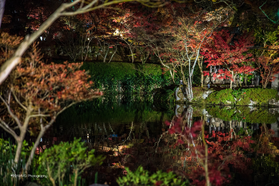 Kyoto at Night No. 3