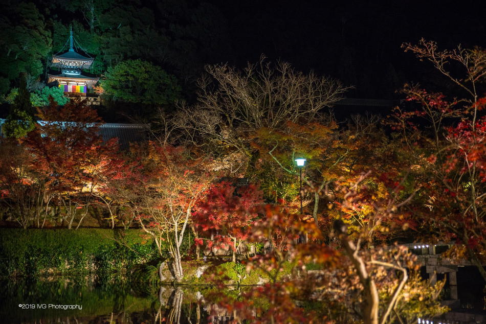 Kyoto at Night No. 8