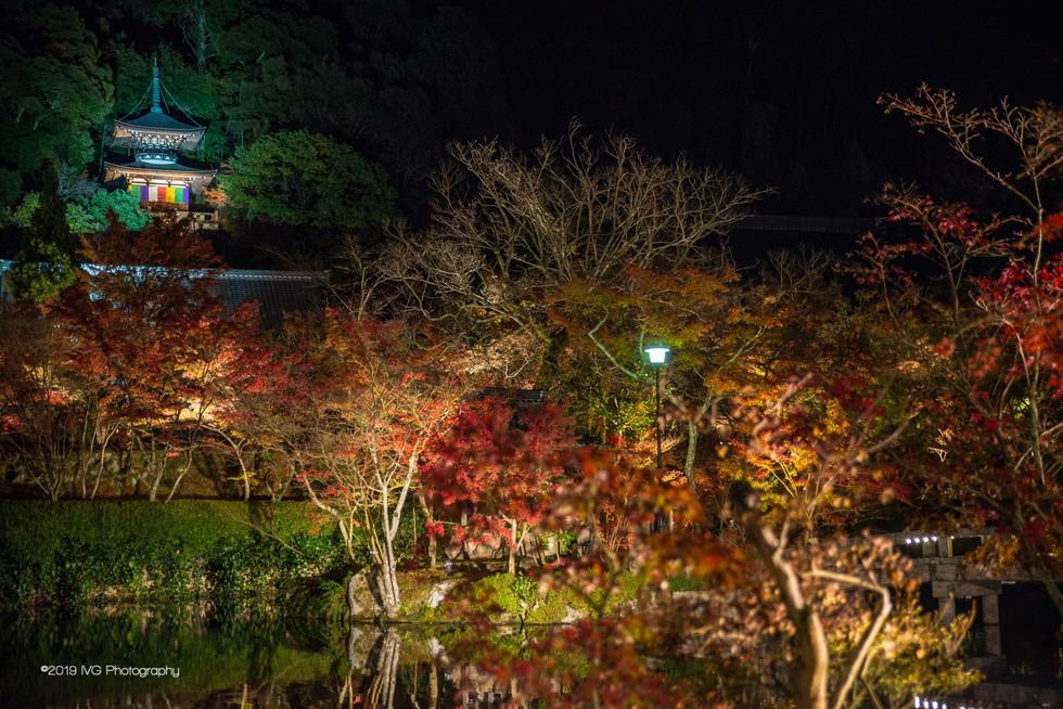 Kyoto at Night No. 8