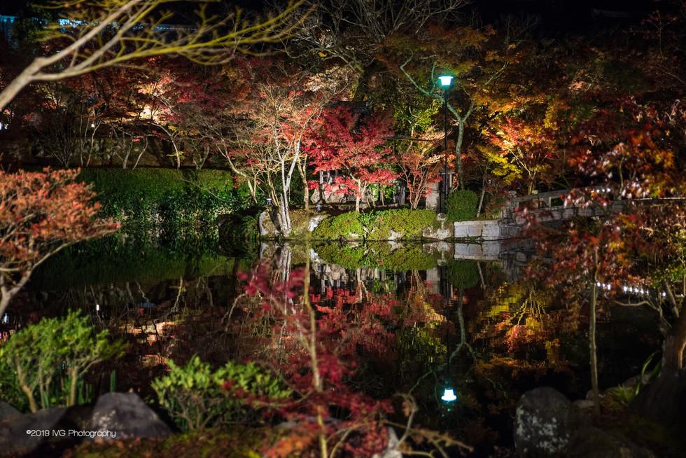 Kyoto at Night No. 2