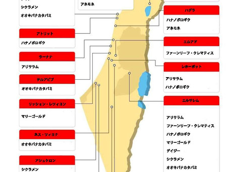 フラワーマップ