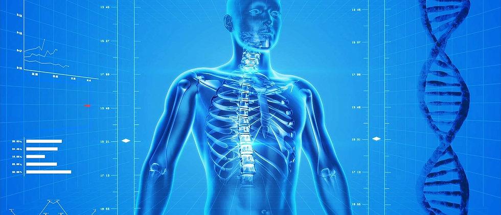 Imagen radiográfica de la estructura vertebral dl cuerpo humano.