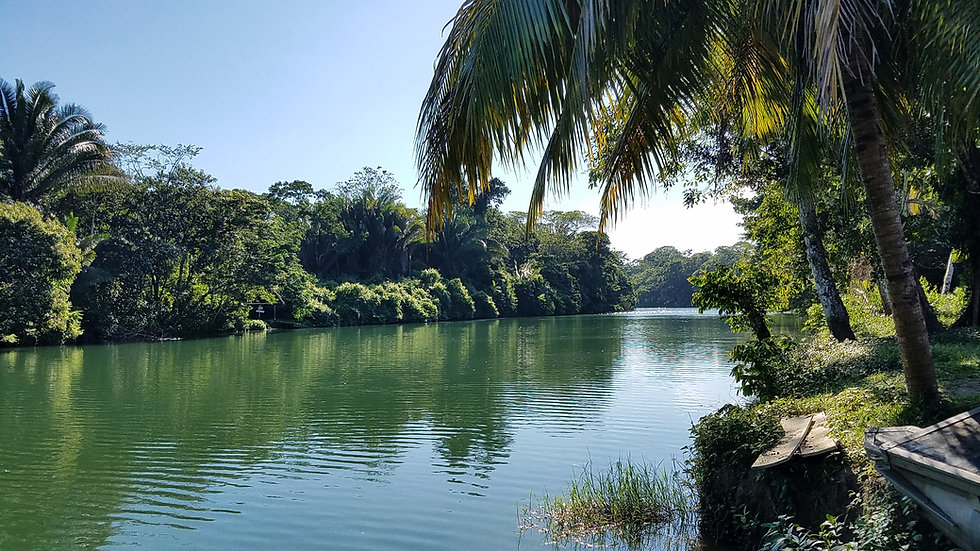 Belize 1.jpg