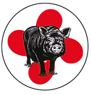 Cochon+ron.png