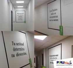 PLOTEO VINIL LIMA PERU