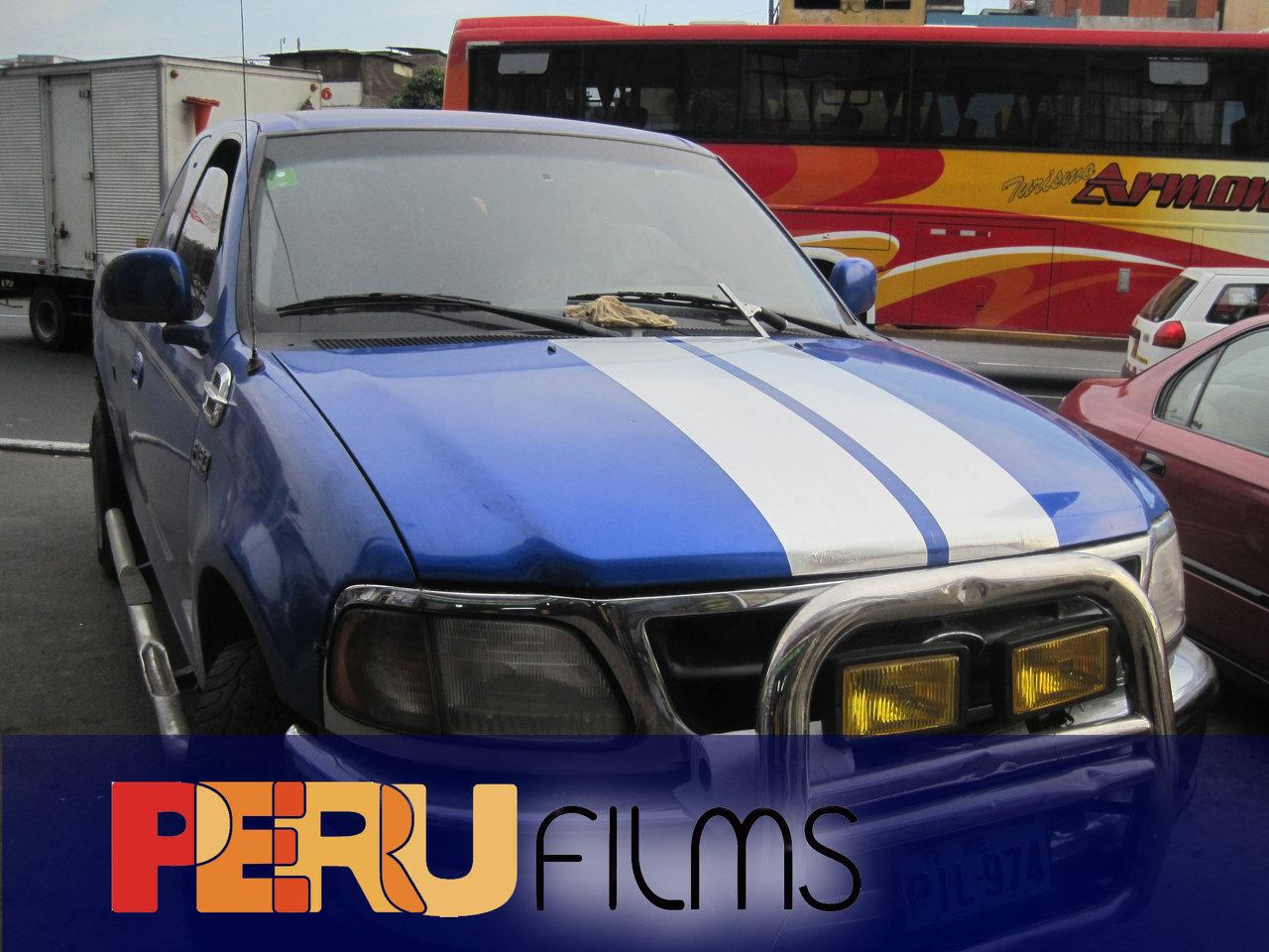 vinil vehicular