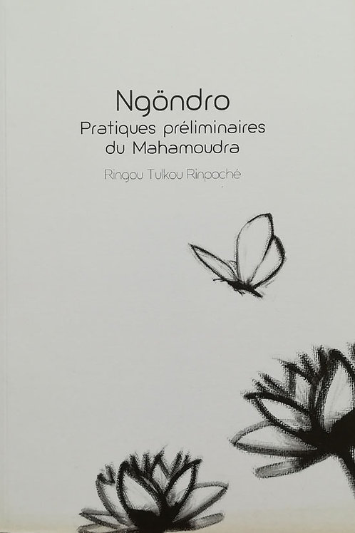 Ngöndro, pratiques préliminaires du Mahamoudra
