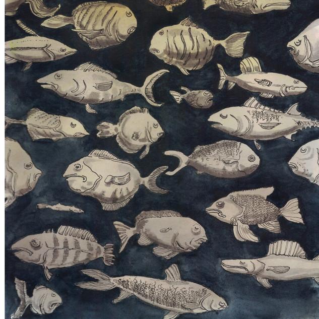 Spící ryby