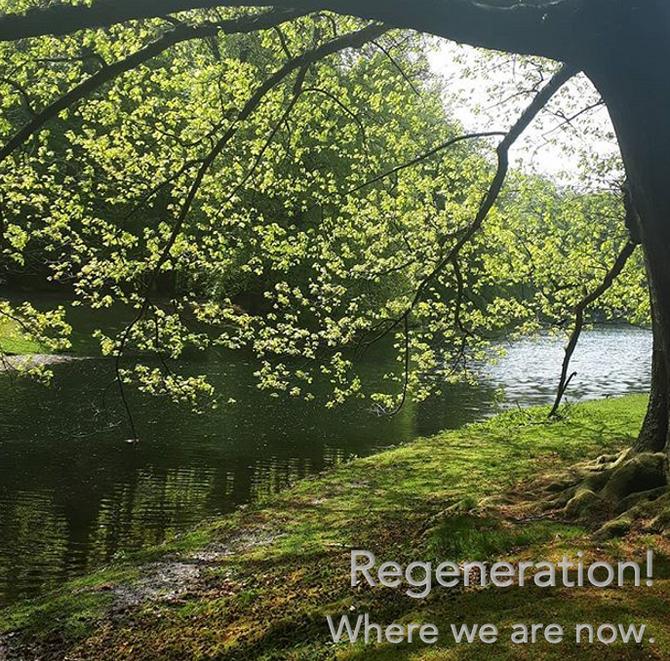 Waarom hebben we Regeneratie nodig?