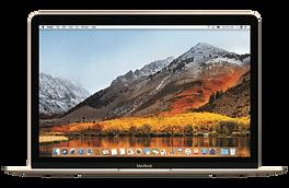 MacBook 12.png