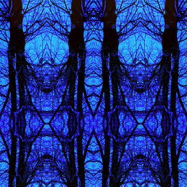 Tree studies iv pattern.jpg ~ These images are inspired by nature walks along the River Tyne in Haddington during the second lockdown in January/February 2021. I have been selling them as Prints (Tree Studies i and v) and as Art Cards through the Artist Support Pledge. If you are interested in purchasing, please get in touch.