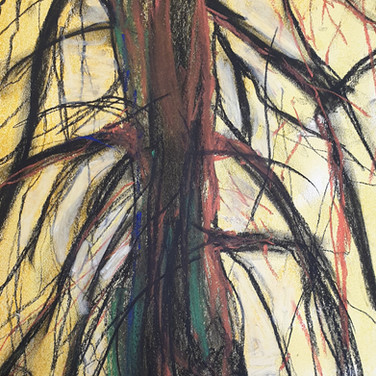 Tree, pastel on paper, Garden Project, April 2020