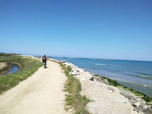 bb-algufosaggio-cosafare-bicicletta.jpg