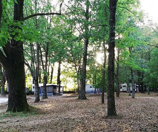 camping-altosavio-piazzolecamper3.jpg
