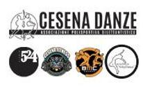 trilogy-icon-cesena_danza.jpg