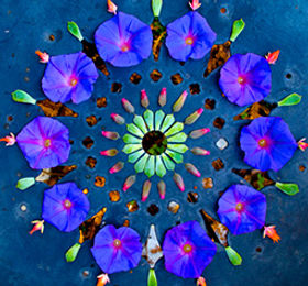 spiritualfestival-coloraspirito.jpg