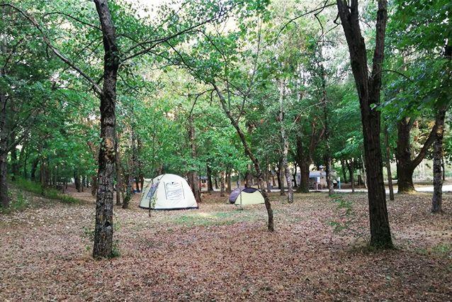camping-altosavio-piazzoletende4.jpg